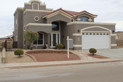 El Paso Single Family Home For Sale: 3213 Cascade Point Drive