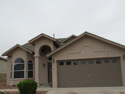 Horizon City Single Family Home For Auction: 717 Desert Ash Drive