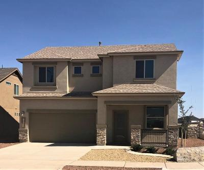 El Paso Single Family Home For Sale: 10480 Hidden Pond Street