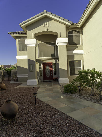 El Paso Single Family Home For Sale: 12289 Roberta Lynne Drive