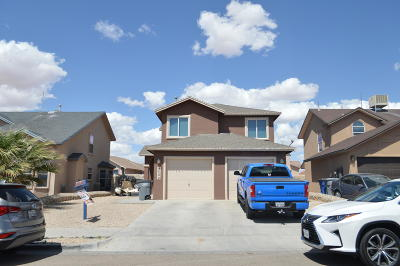 El Paso Single Family Home For Sale: 4088 Tierra Bronce Drive