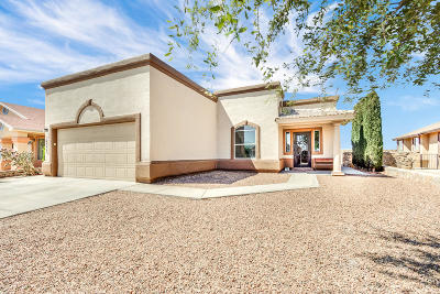 Horizon City Single Family Home For Sale: 14333 Desert Cactus Drive