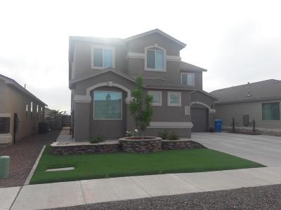 El Paso Single Family Home For Sale: 155 N N. Manzanita Drive