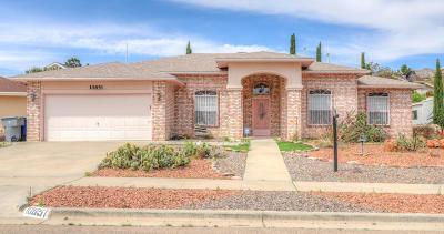North Hills Single Family Home For Sale: 10851 Loma De Alma Drive