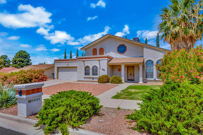 Chaparral Park Single Family Home For Sale: 6425 Amposta Drive