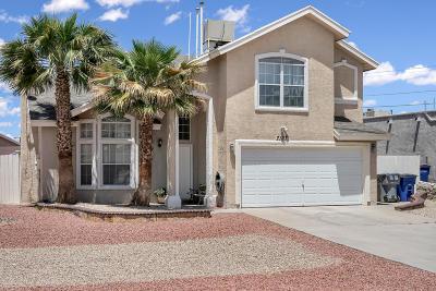 El Paso Single Family Home For Sale: 7197 Desert Eagle Drive