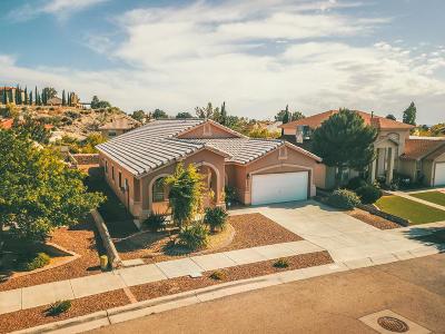 Chaparral Park Single Family Home For Sale: 5984 Los Pueblos Drive