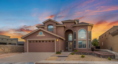 El Paso Single Family Home For Sale: 14020 Tower Point Way