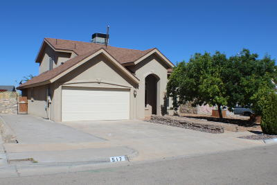 El Paso Single Family Home For Sale: 517 Covington Ridge Way