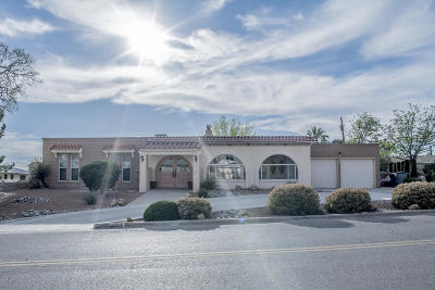 El Paso Single Family Home For Sale: 315 Crown Point Dr Drive
