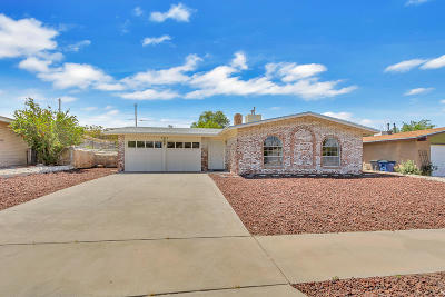 Chaparral Park Single Family Home For Sale: 7312 Ramada Drive