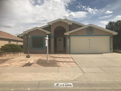 El Paso Single Family Home For Sale: 12456 Tierra Espada Drive