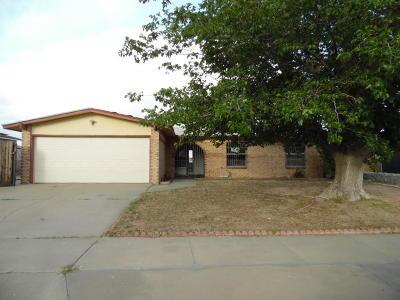 El Paso Single Family Home For Sale: 10616 Captain Valtr Street