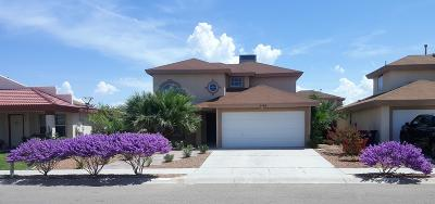 El Paso Single Family Home For Sale: 3284 Garden Point Drive