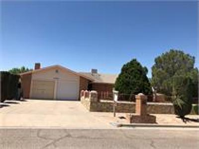 El Paso Rental For Rent: 11240 Warfeather Drive