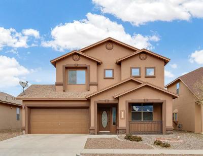 El Paso Single Family Home For Sale: 5580 Jim Castaneda Drive