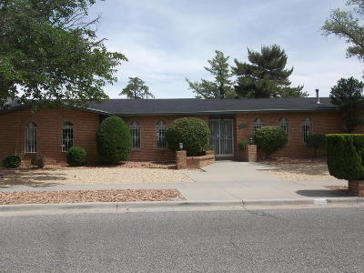 El Paso Single Family Home For Sale: 6220 Pino Real Drive