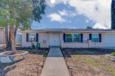 El Paso Single Family Home For Sale: 6849 Alto Rey Avenue