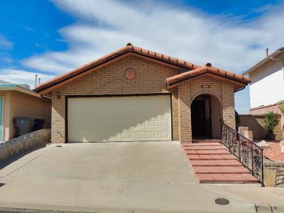 El Paso Single Family Home For Sale: 3245 Mountain Ridge Drive
