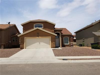 El Paso Single Family Home For Sale: 2921 Pebble Rock Place