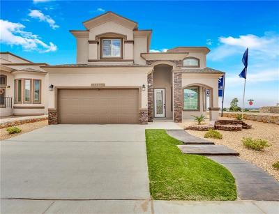 El Paso Single Family Home For Sale: 6109 Fashion Street