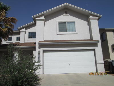 El Paso Single Family Home For Sale: 1484 Luz De Sol Drive