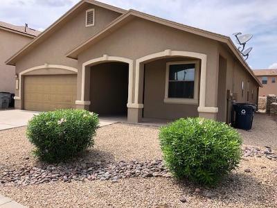 El Paso Single Family Home For Sale: 5517 Jim Castaneda Drive