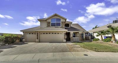El Paso Single Family Home For Sale: 12478 Paseo Lago Drive