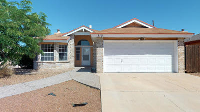 Single Family Home For Sale: 313 Arisano Drive