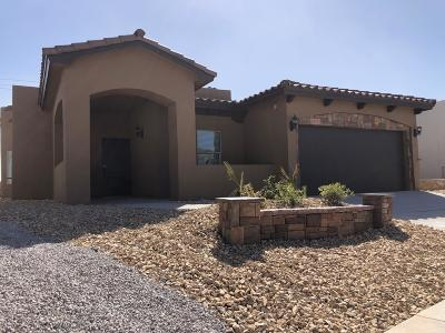 El Paso Single Family Home For Sale: 13440 Wigan