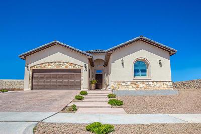 El Paso Single Family Home For Sale: 719 Lanner Street