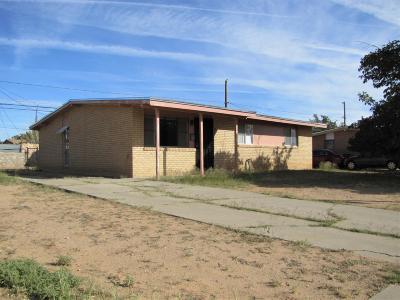 El Paso Single Family Home For Sale: 5721 Edinburg Drive