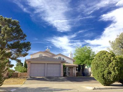 El Paso Single Family Home For Sale: 11345 Crater Lake Avenue