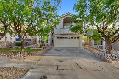 El Paso TX Single Family Home For Sale: $189,900
