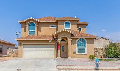Single Family Home For Sale: 11332 Charles Maiz Lane