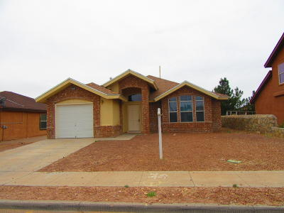 El Paso Single Family Home For Sale: 10782 Spring Valley Circle