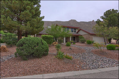 El Paso Single Family Home For Sale: 509 Regency Drive