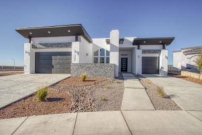 El Paso Single Family Home For Sale: 1793 Sidesaddle Drive