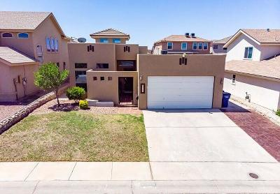 El Paso Single Family Home For Sale: 12528 Wolf Berry Drive