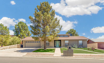 Single Family Home For Sale: 6624 Amposta Drive