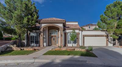 El Paso Single Family Home For Sale: 6277 Los Bancos Drive