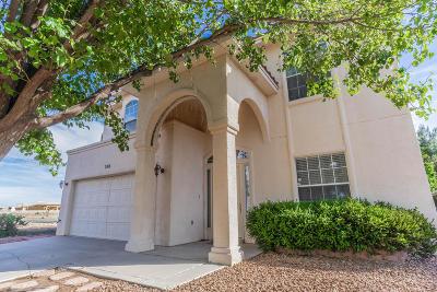 El Paso Single Family Home For Sale: 700 Camino Norte Court