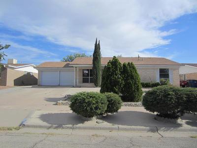 El Paso Single Family Home For Sale: 10220 Renfrew Drive