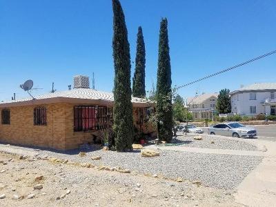 El Paso Multi Family Home For Sale: 1006 &1008 W Yandell Drive