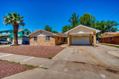 El Paso Single Family Home For Sale: 3225 Shetland Road