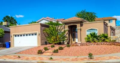 El Paso Single Family Home For Sale: 1400 Rainbow Ridge Drive