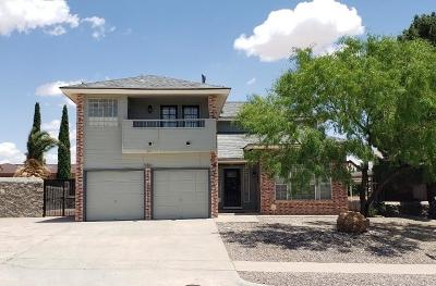 El Paso Single Family Home For Sale: 4361 Loma De Luna Drive