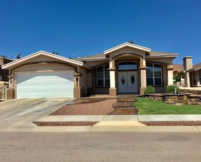 El Paso Single Family Home For Sale: 3817 Tierra Tania Place