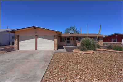 El Paso Single Family Home For Sale: 317 Rio Tinto Drive
