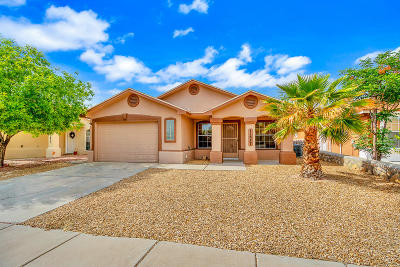 El Paso Single Family Home For Sale: 11637 Desert Keep Drive